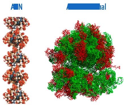 acidos nucleicos libros pdf