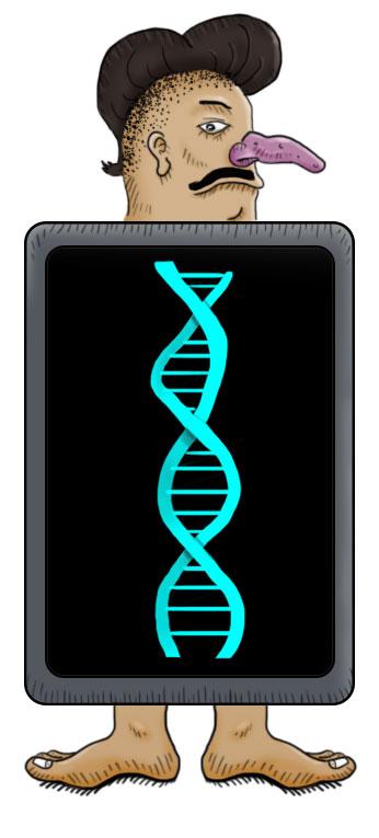 Radiografía genética