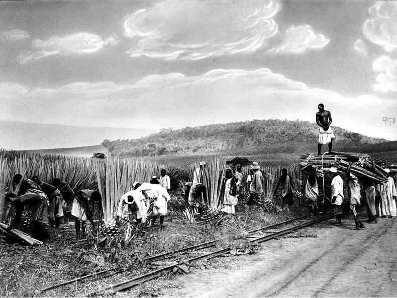 Los hacendados europeos