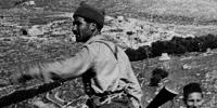 Guerra de independencia (1948-1949