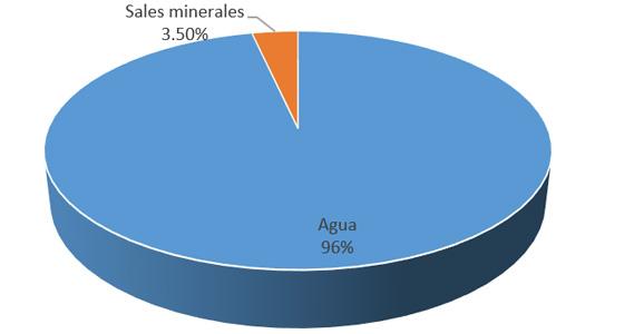 Porcentaje de elementos químicos en el cuerpo humano